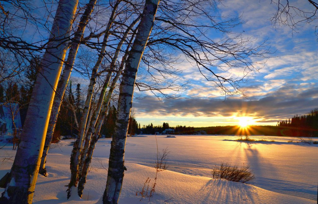 Sun rising over a wooded clearing during winter in Canada